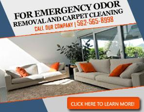Carpet Cleaning Artesia, CA | 562-565-8998 | Fast & Expert